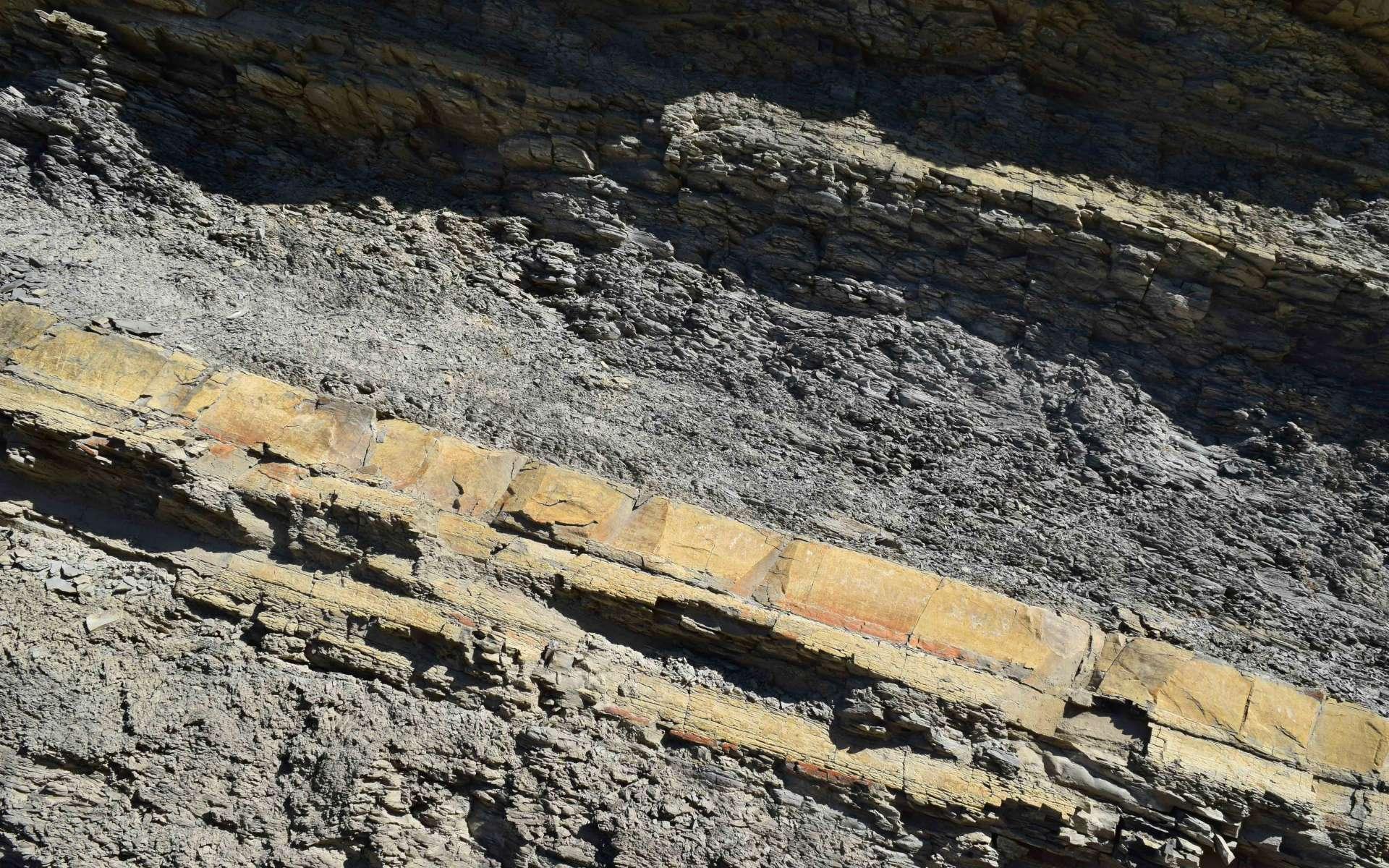 Marne avec alternance de calcaire marneux - balade de St Génis (Crédits : Sabine Meneut)