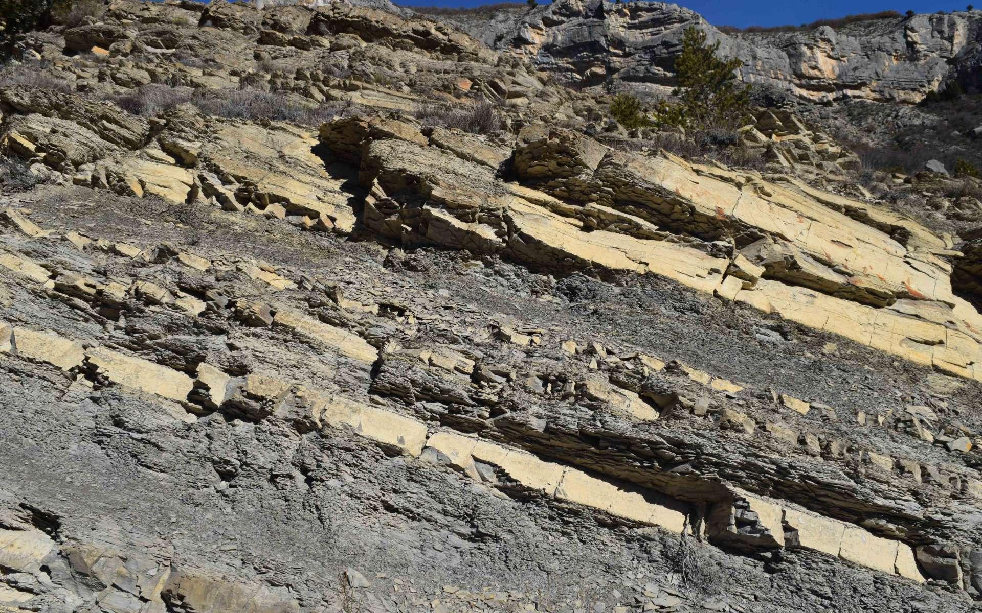Marne alternée avec du calcaire - balade de St Génis (Crédits : Sabine Meneut)