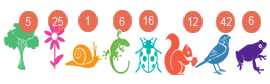 Inventaire des espèces sur la balade