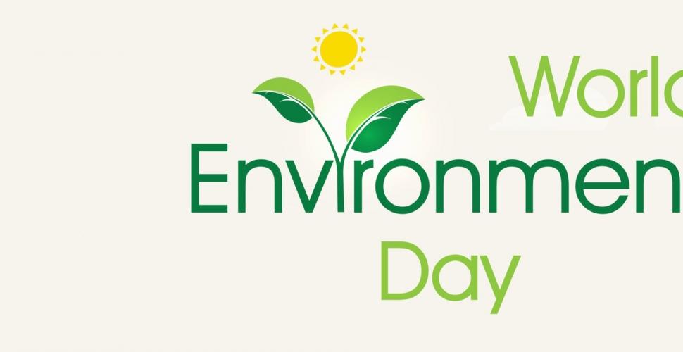 Journée Mondiale de l'Environnement : Combattre la pollution plastique