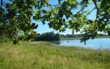 Balade de la Réserve naturelle de la Bassée - Sentier de découverte du Bois Prieux