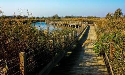Site naturel du Méjean - crédit: CG