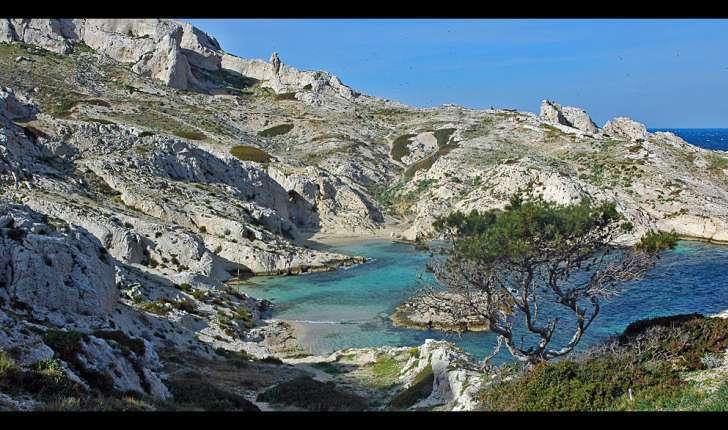 Calanque de la Crine, Balade Marseille