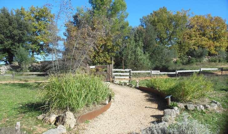 Sentier des plantes aromatiques (Crédits : Parc d'Aoubré)