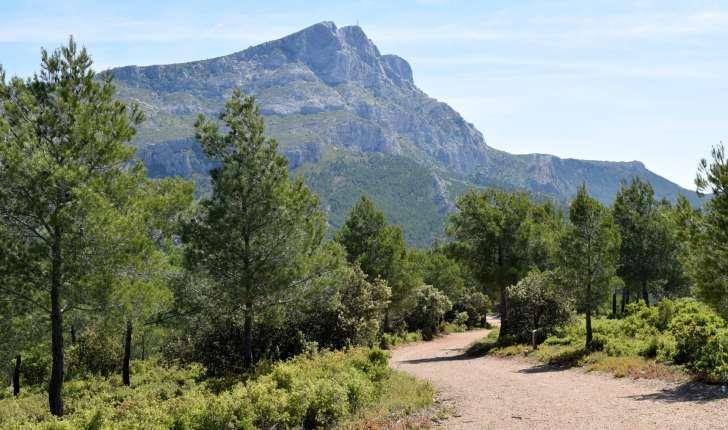 Montagne Sainte-Victoire (Crédits : Léa Charbonnier)