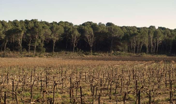 Ecobalade Lambesc (Crédits : Sabine Meneut)