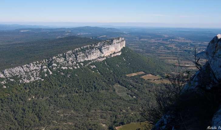 Panorama sur la montagne de l'Hortus, depuis le sommet du Pic Saint-Loup © Mathilde Poussin