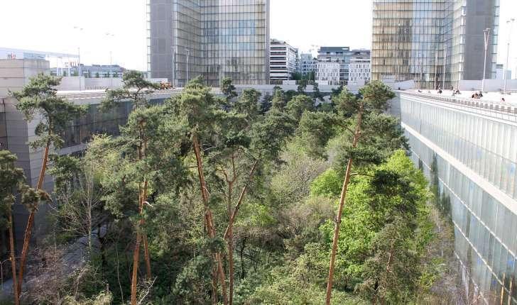 Balade de paris 75 la nature et les jardins de paris for Le jardin de lea