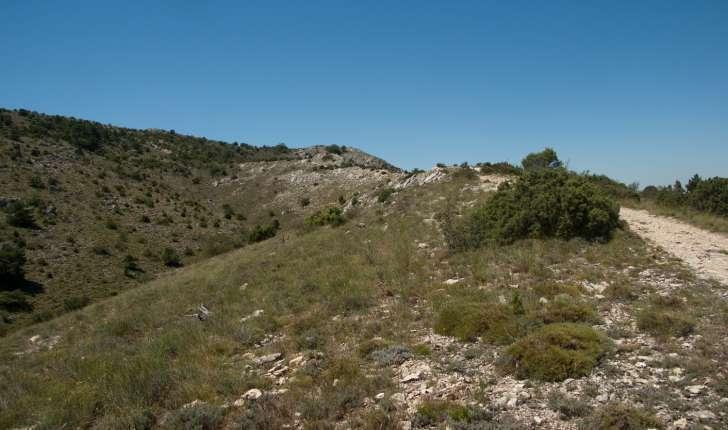 Sentier de la balade du Pic des Mouches sur la Montagne de la Sainte Victoire