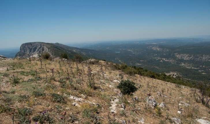 Pic des Mouches - une balade de la Montagne de la Sainte Victoire