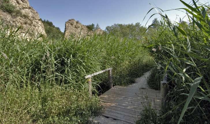 tour du lac chateau arnoux l'escale volonne nature balade randonnée pedestre vtt provence durance