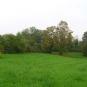 Prairie-balade-Vitry-Parc-Lilas-Val-de-Marne